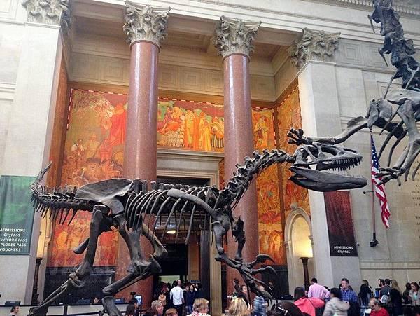 美國自然歷史博物館,紐約行程規劃,紐約行程推薦,紐約旅遊