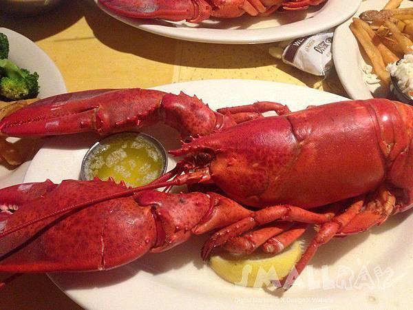 美國緬因州-酒吧海港Bar Harbor-龍蝦餐廳推薦-West St. Cafe