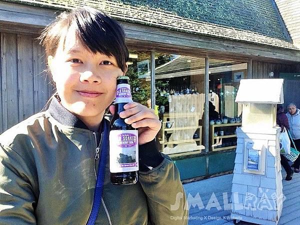 美國緬因州-阿卡迪亞國家公園 Acadia National Park-藍莓汽水
