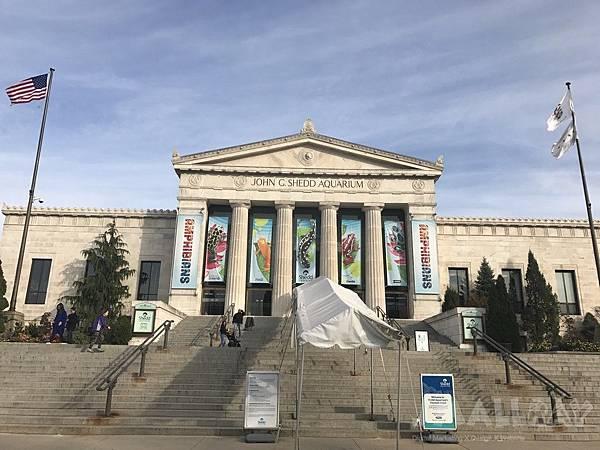 The Shedd Aquarium 謝爾德水族館-芝加哥行程推薦,芝加哥行程攻略