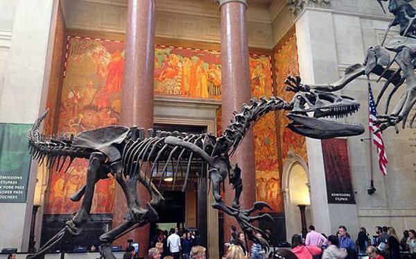 美國自然歷史博物館-電影博物館驚魂夜的博物館-超大恐龍化石-紐約必去博物館-紐約行程推薦