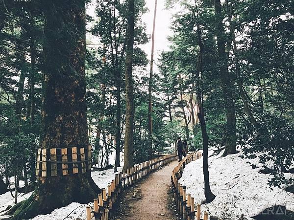 日本中部北陸地區-金澤市必去景點-兼六園-日本三大名園