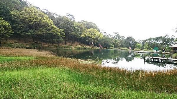 樹木水草生態保育.jpg