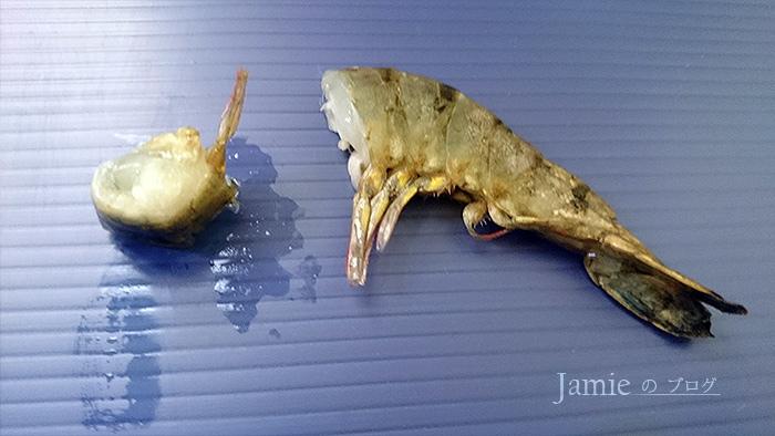 渦蟲食物蝦.jpg