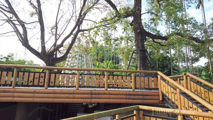樹屋觀景台11.jpg