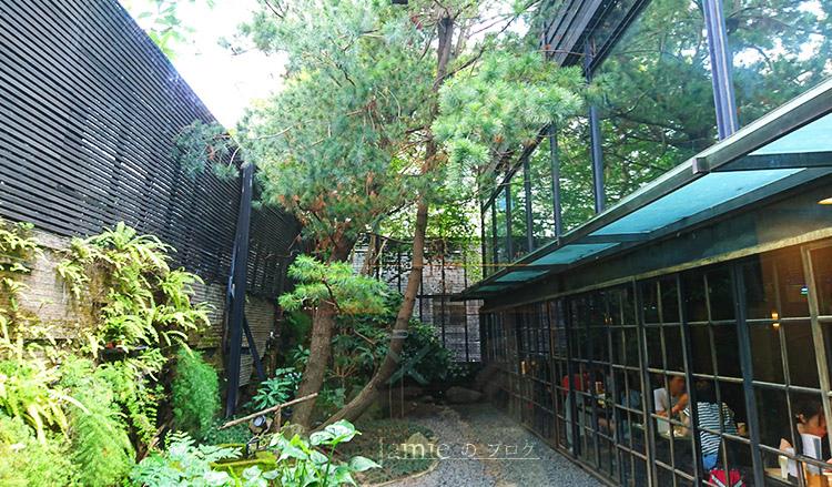 戶外蕨類花圃景觀.jpg
