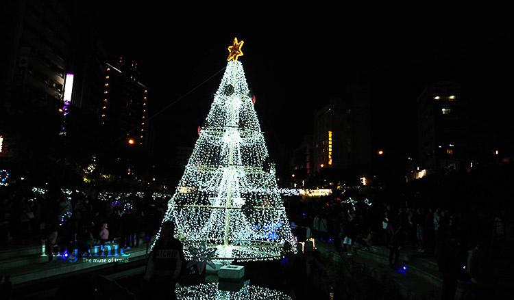 聖誕樹夜景.jpg