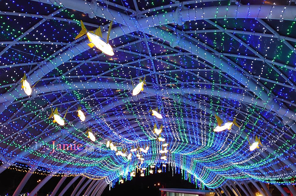 飛魚燈.jpg