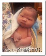 剛出生的龍小妹