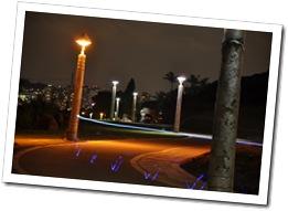 自行車道光影試拍-1