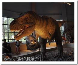 台中科博館小小動物園展區