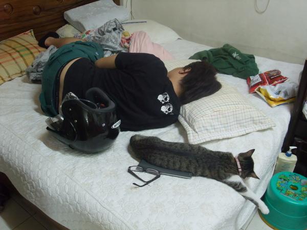 是貓咪學你 還是你學貓咪?