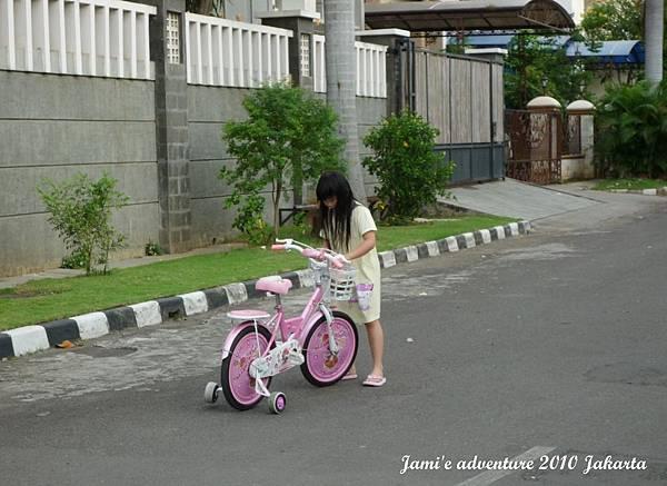 P1060590.JPG