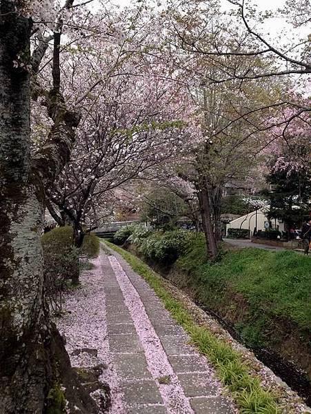 日本京都哲學之道