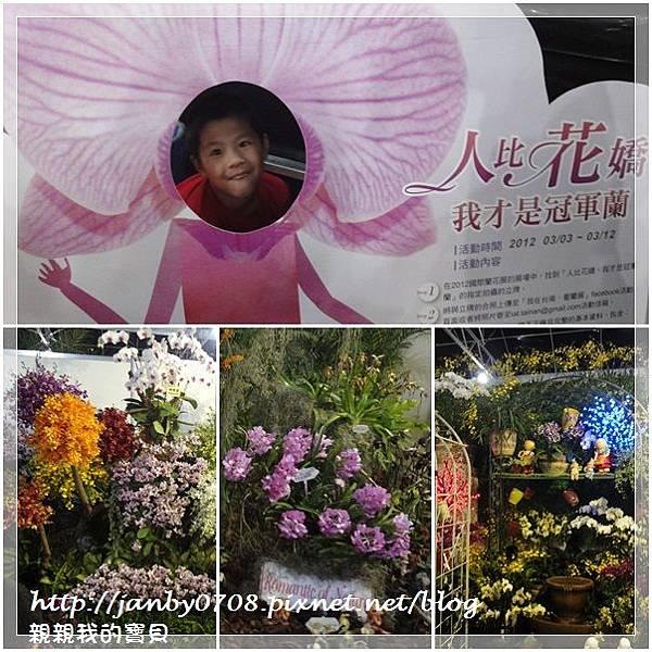 flower-14