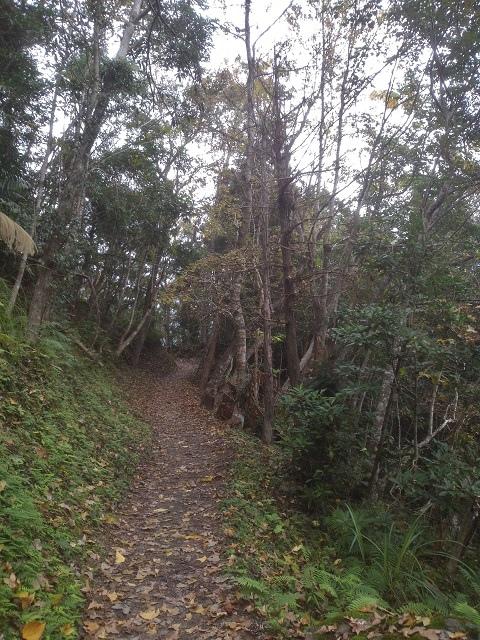 瓦拉米步道17