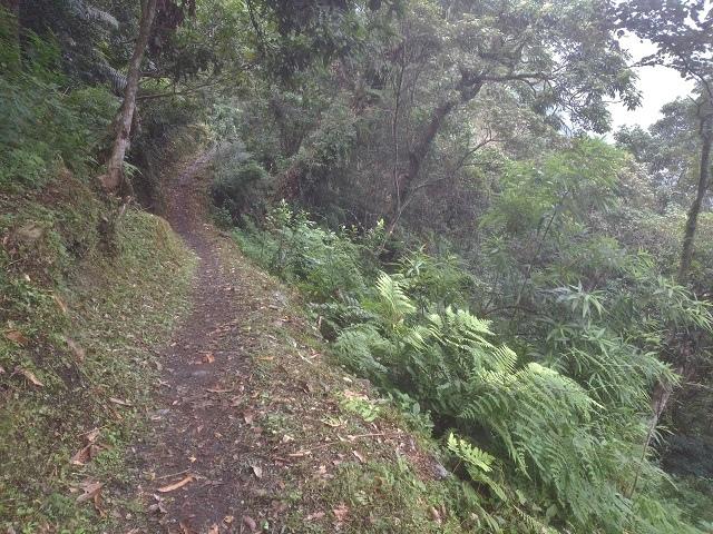 瓦拉米步道31