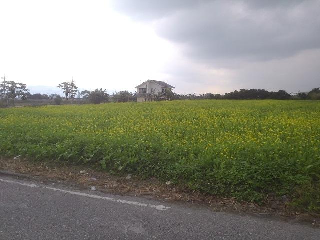 永興村12