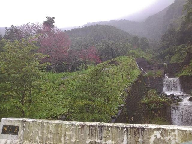 樹湖櫻花&瀑布6