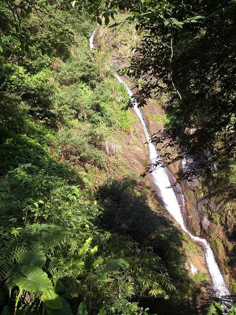 樹湖櫻花&瀑布22