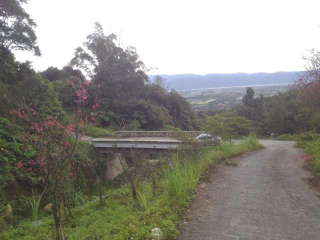 樹湖櫻花&瀑布45