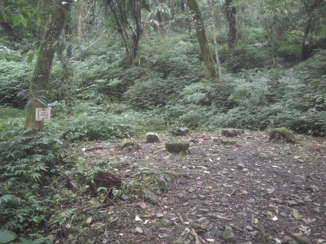 松羅步道29