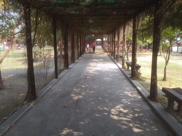 嘉蓮濕地公園3
