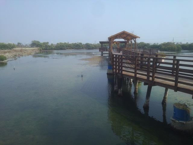 嘉蓮濕地公園10