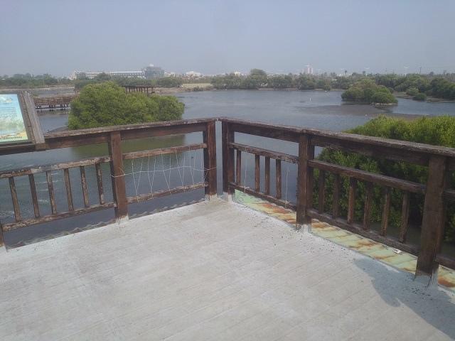 嘉蓮濕地公園13
