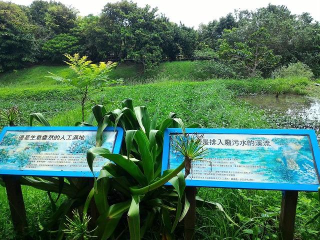 關渡自然公園4