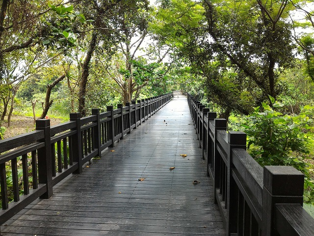 關渡自然公園6