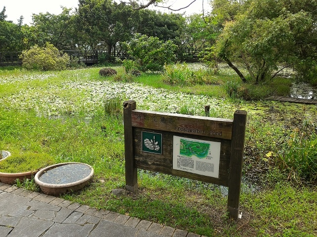 關渡自然公園8