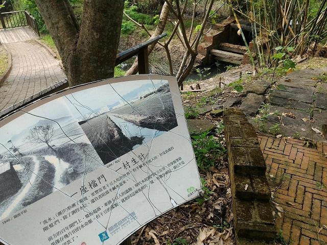 關渡自然公園11