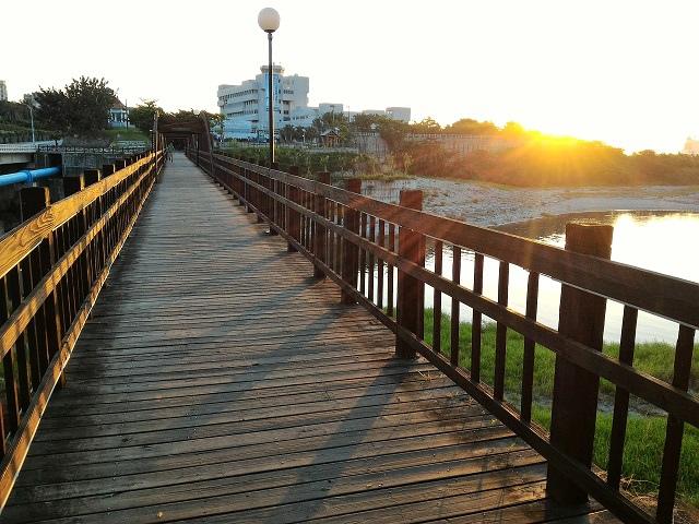曙光橋14