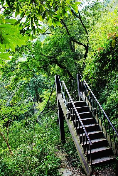 森林步道吊橋