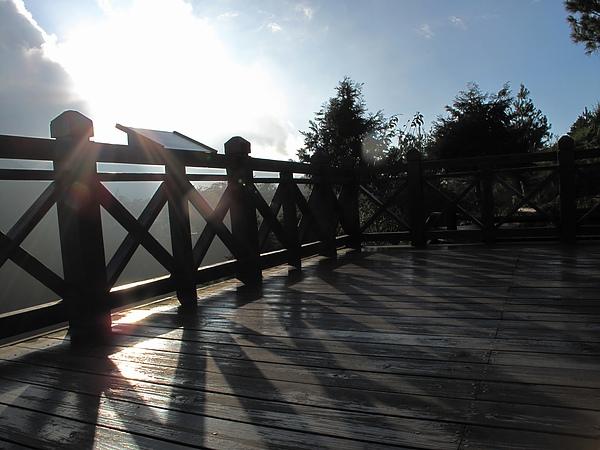 觀霧管理站步道
