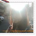 DSCF9277_nEO_IMG.jpg