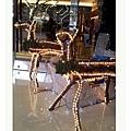 2011-12-25 16.10.08_nEO_IMG.jpg