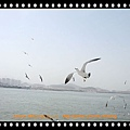 DSCF5283_nEO_IMG.jpg