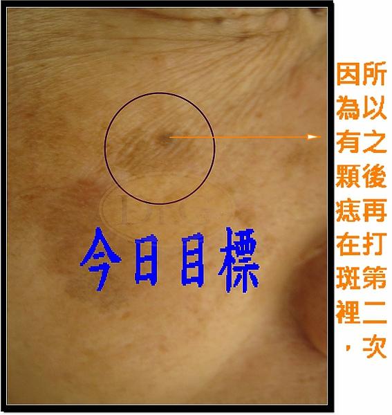 謝惠珠990831 (2)-2.jpg