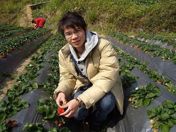 悶騷的Ian跟悶騷的草莓