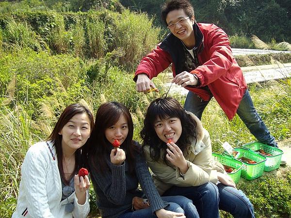 Chris:採草莓嗎?!