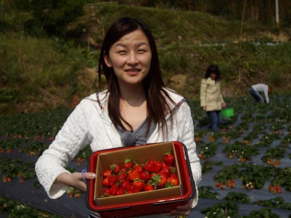 耀眼的Cynthia跟耀眼的草莓