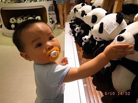 20120610專科同學去動物園128