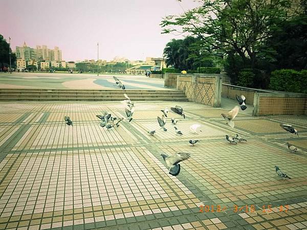20130314阿愷15(001).jpg