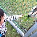 20140216阿愷玩透透02.jpg