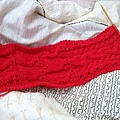 20141223圍巾完工01.jpg
