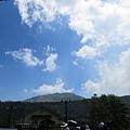 20150406竹子湖拔海芋13.jpg