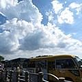 20150406竹子湖拔海芋71.jpg