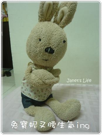 兔寶妮pose1
